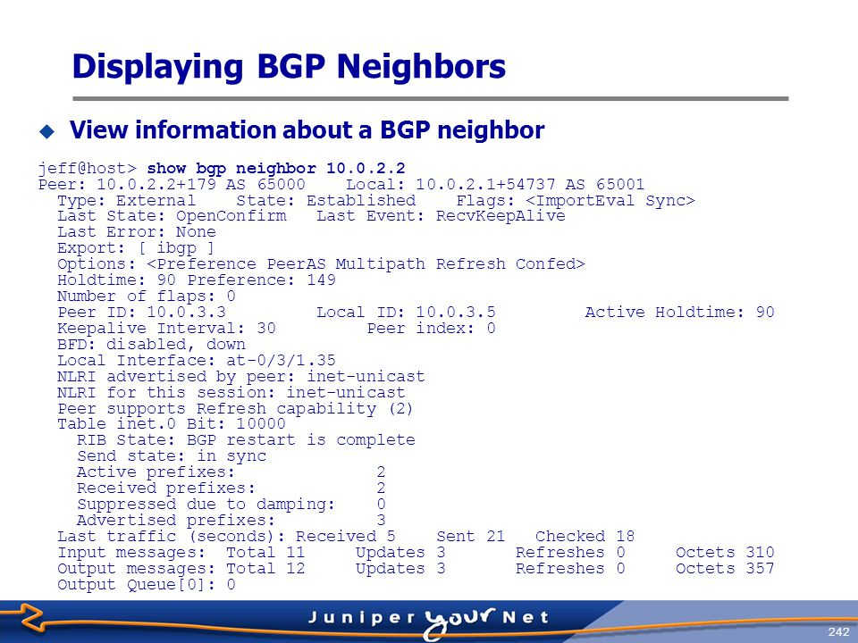 Displaying BGP Neighbors