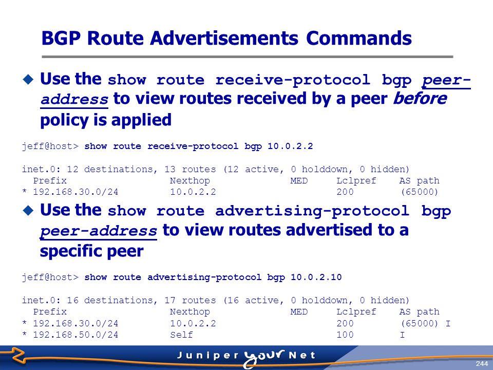 BGP Route Advertisements Commands