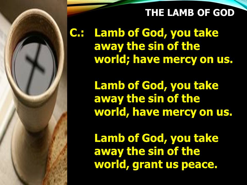 C.: Lamb of God, you take away the sin of the world; have mercy on us.