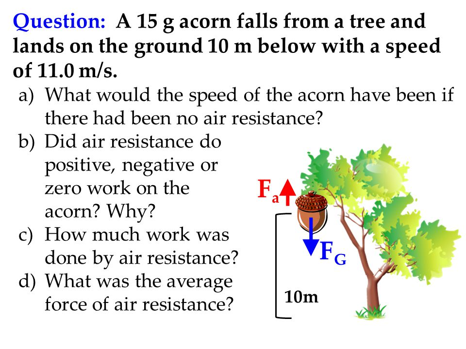Question: A 15 g acorn falls from a tree and lands on the ground 10 m below with a speed of 11.0 m/s.