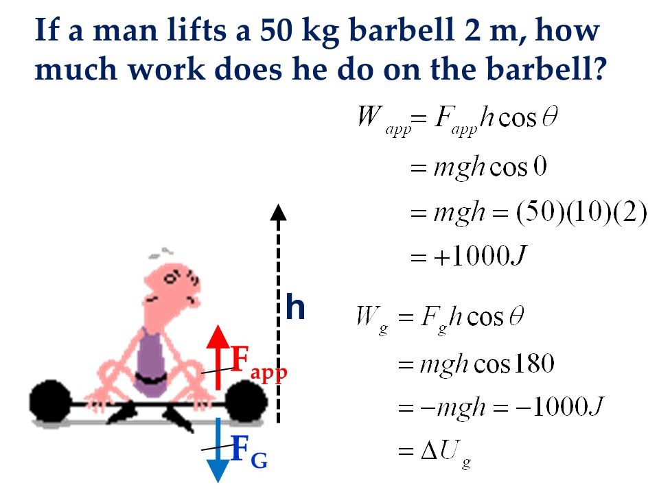 If a man lifts a 50 kg barbell 2 m, how much work does he do on the barbell