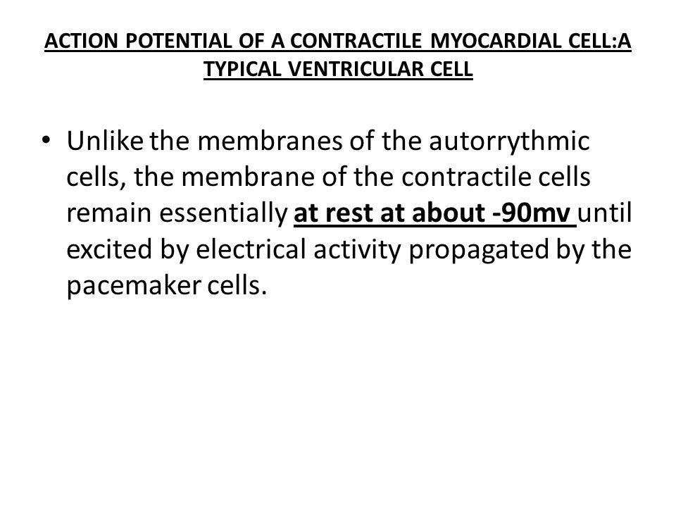 ACTION POTENTIAL OF A CONTRACTILE MYOCARDIAL CELL:A TYPICAL VENTRICULAR CELL
