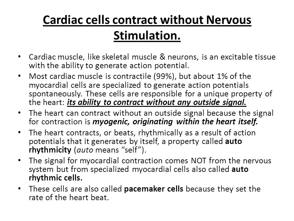 Cardiac cells contract without Nervous Stimulation.
