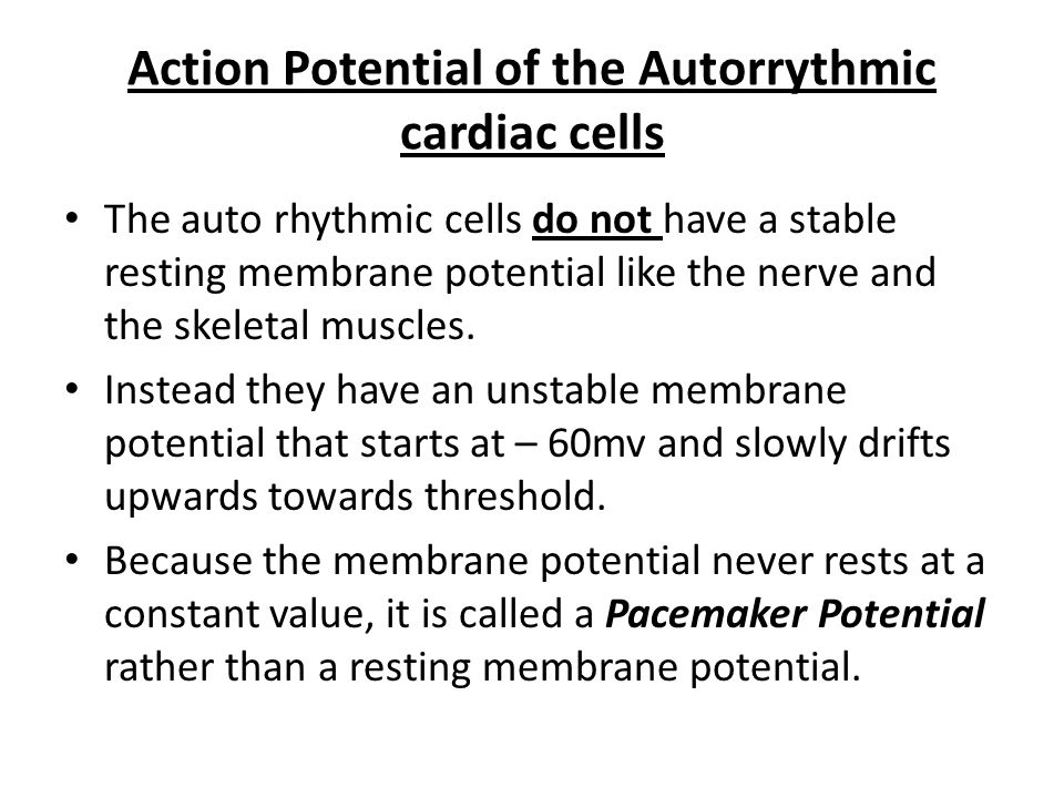 Action Potential of the Autorrythmic cardiac cells