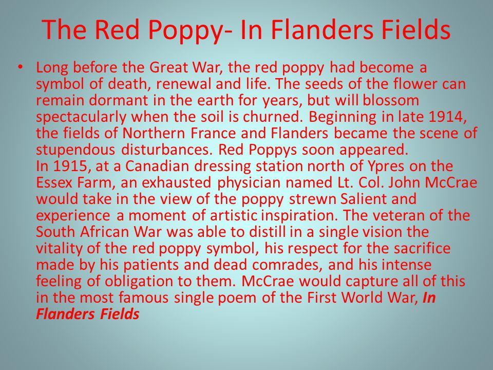 The Red Poppy- In Flanders Fields