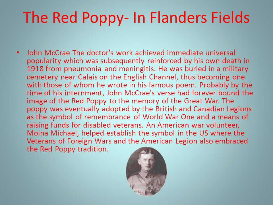 The Red Poppy- In Flanders Fields