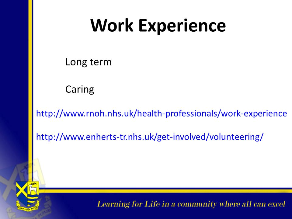 Work Experience Caring Long term