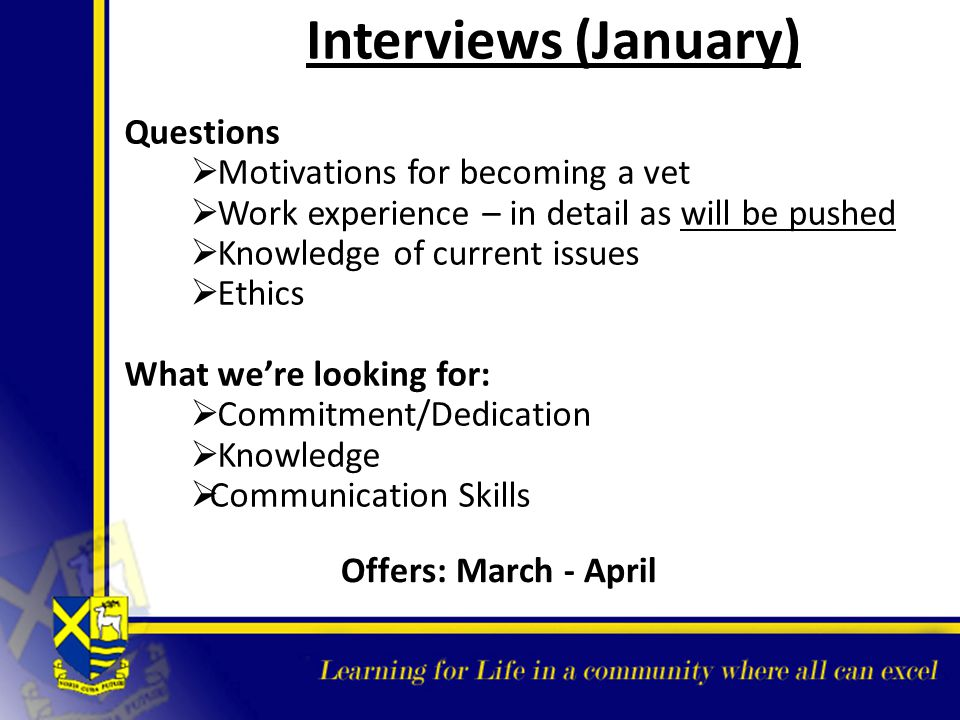 Interviews (January) Questions Motivations for becoming a vet