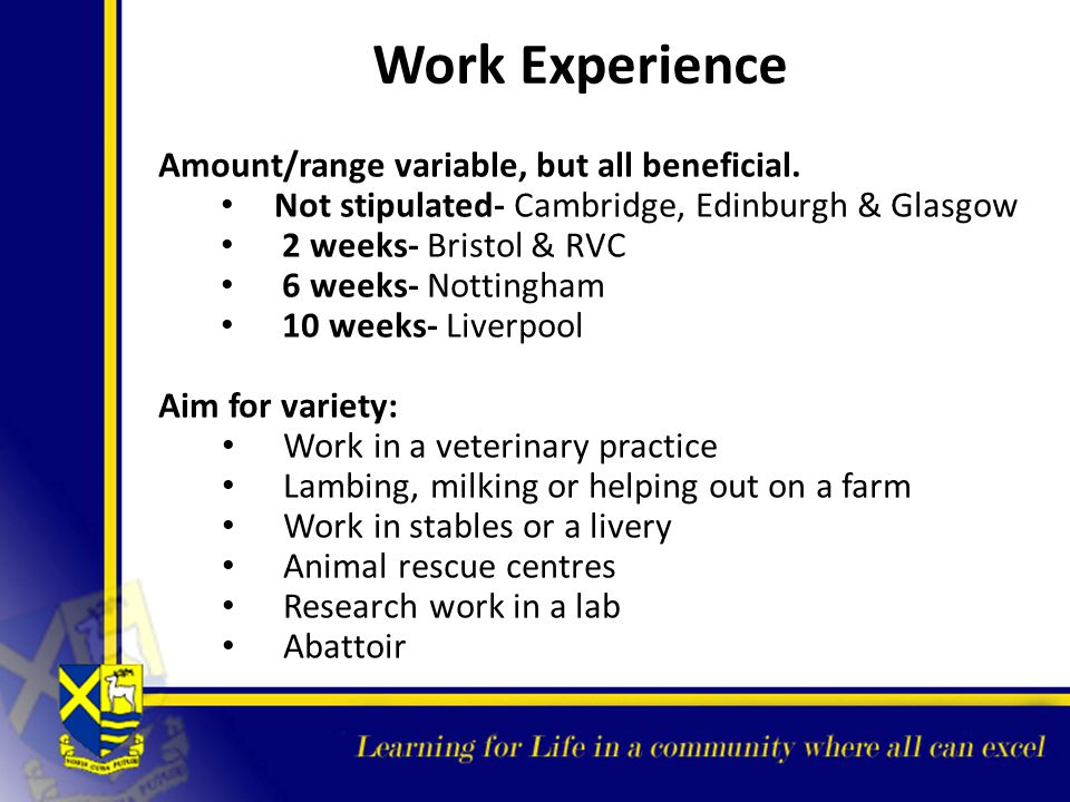 Work Experience Amount/range variable, but all beneficial.