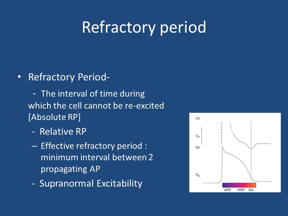 Refractory period Refractory Period-