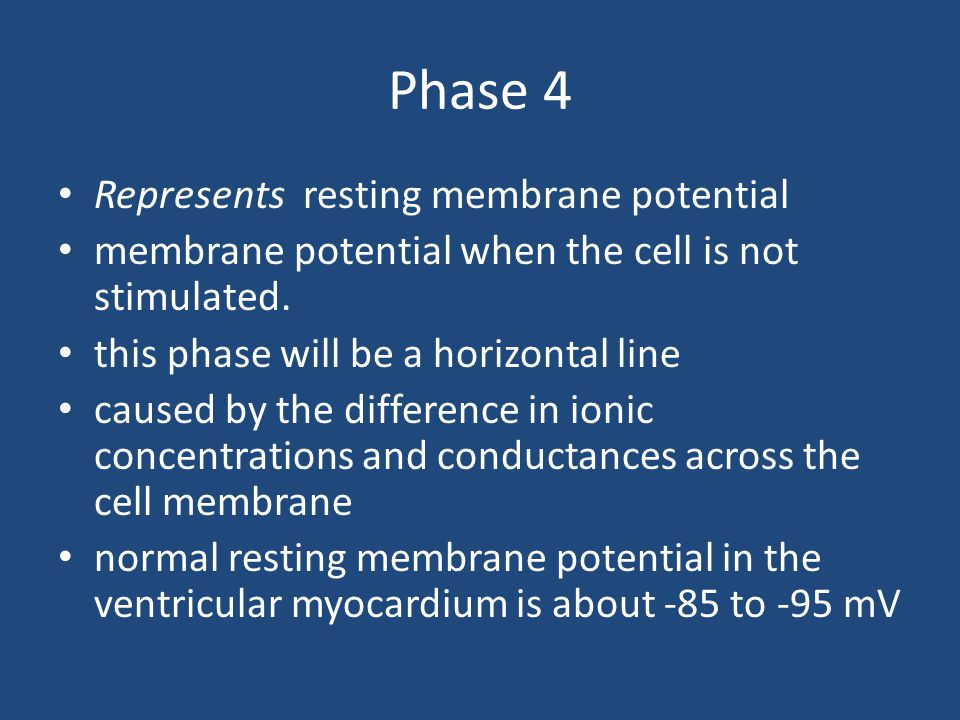 Phase 4 Represents resting membrane potential