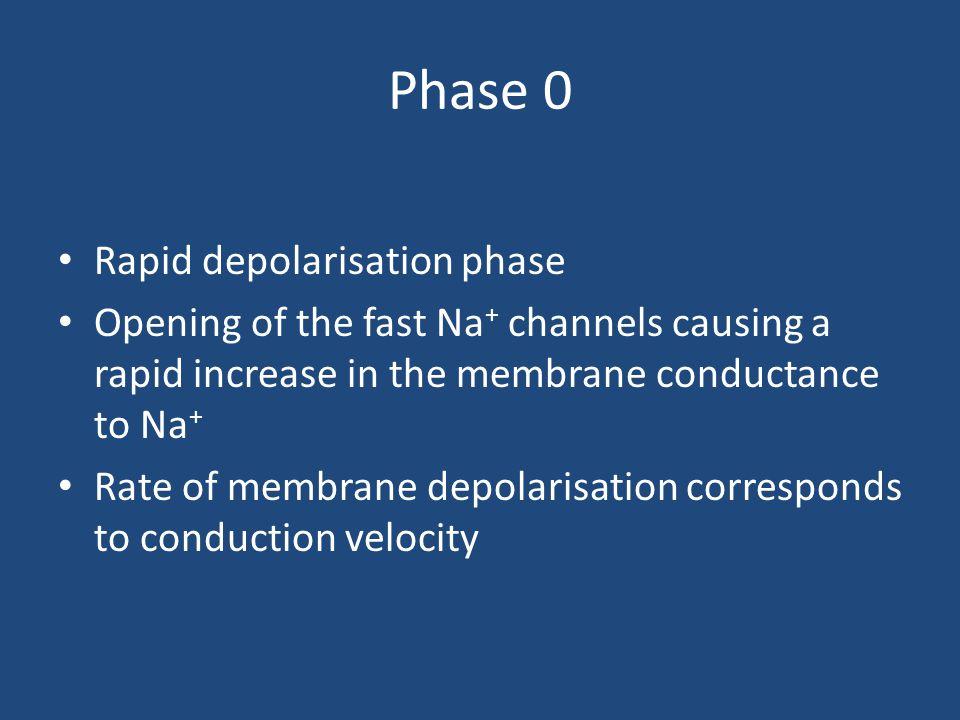 Phase 0 Rapid depolarisation phase