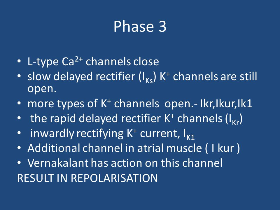 Phase 3 L-type Ca2+ channels close