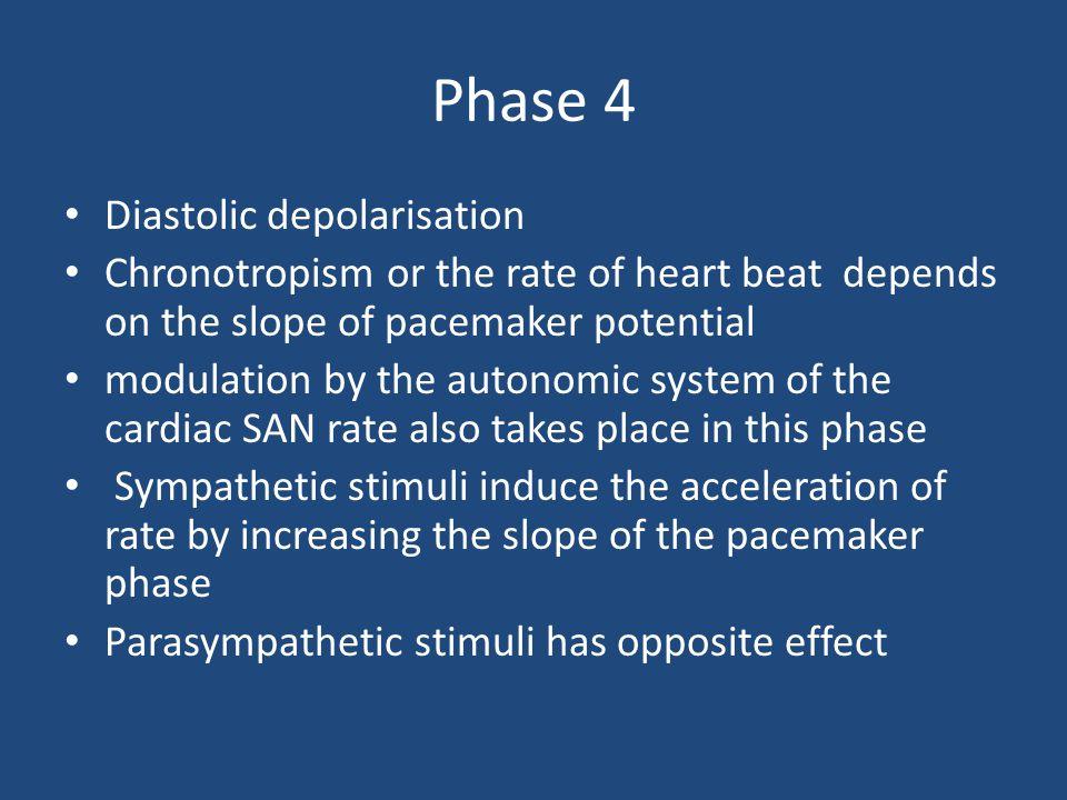Phase 4 Diastolic depolarisation