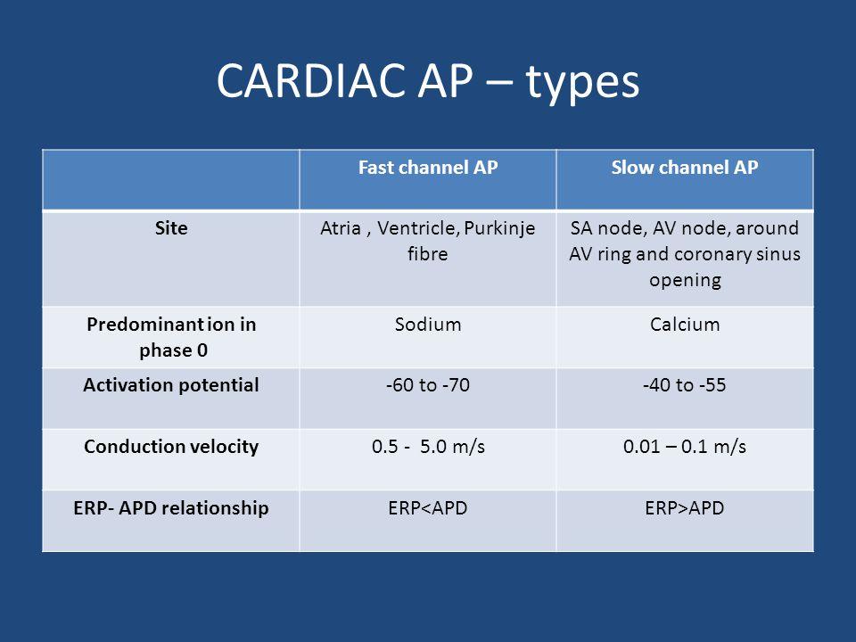 CARDIAC AP – types Fast channel AP Slow channel AP Site