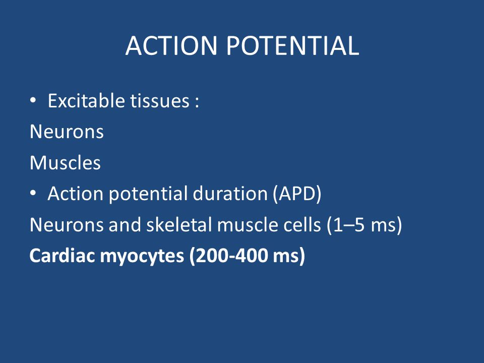 ACTION POTENTIAL Excitable tissues : Neurons Muscles