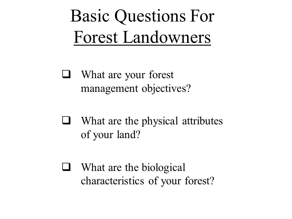 Basic Questions For Forest Landowners