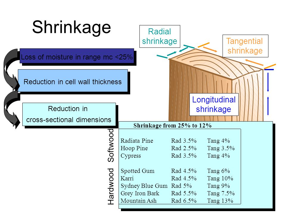 Shrinkage Radial shrinkage Tangential shrinkage Longitudinal shrinkage