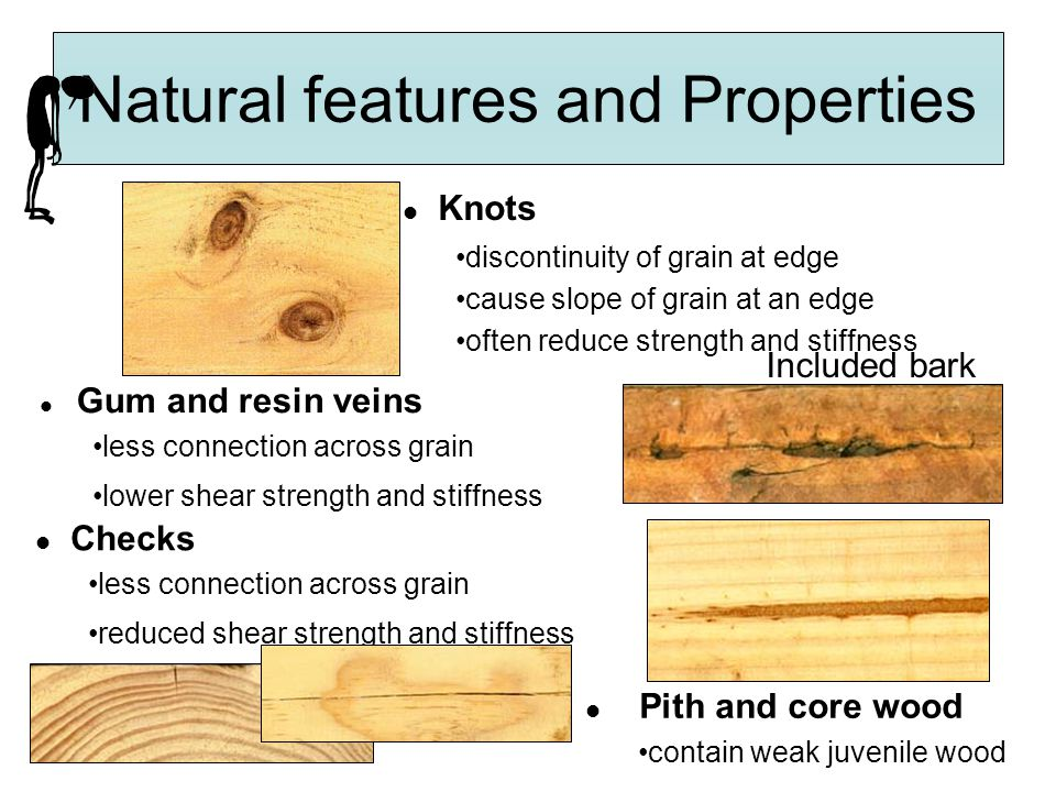 Natural features and Properties