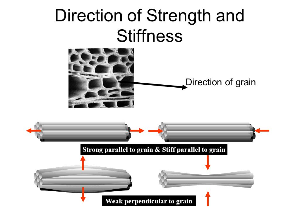 Direction of Strength and Stiffness