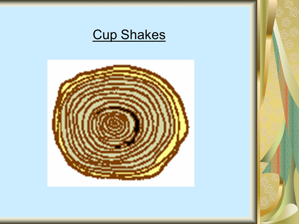 Cup Shakes
