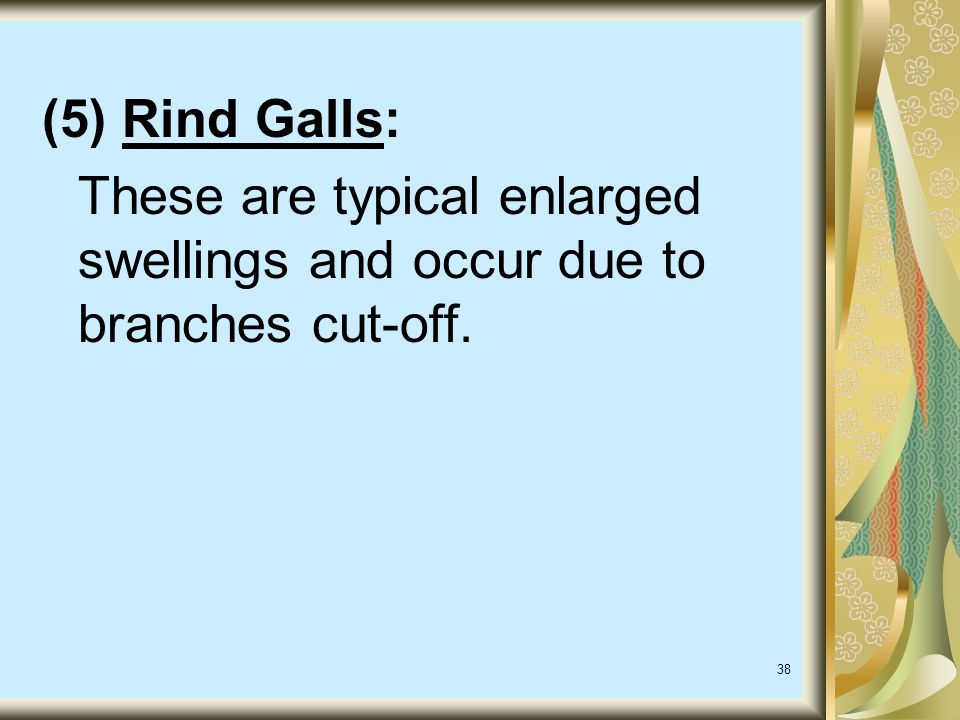 (5) Rind Galls: These are typical enlarged swellings and occur due to branches cut-off.