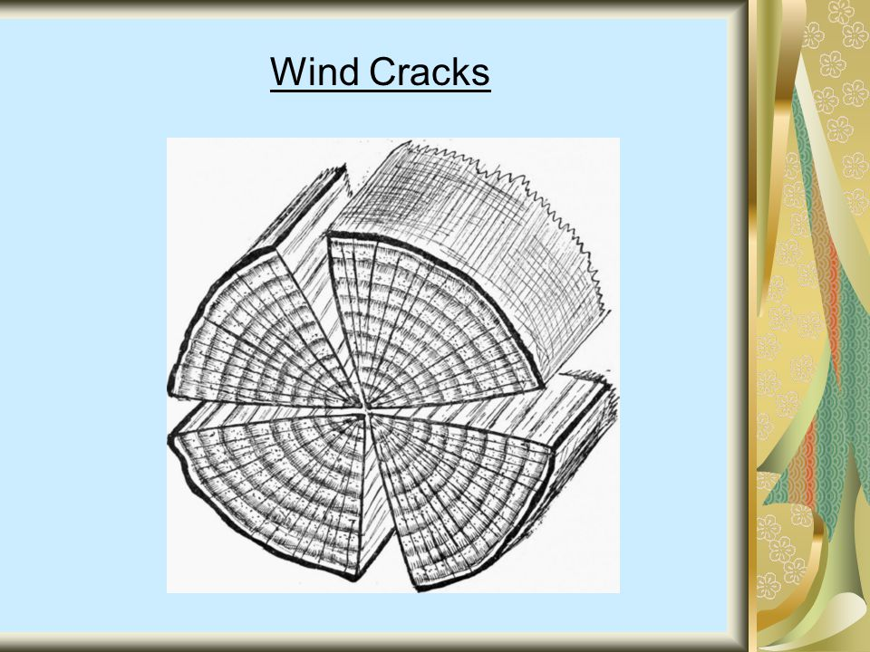 Wind Cracks