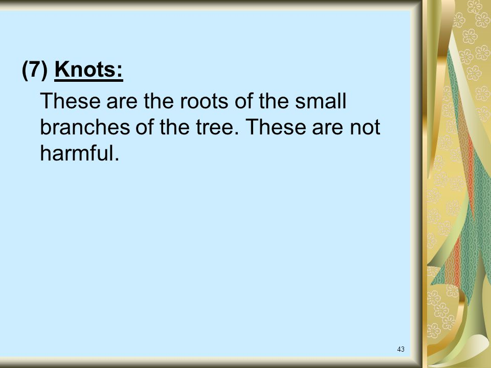 (7) Knots: These are the roots of the small branches of the tree. These are not harmful.