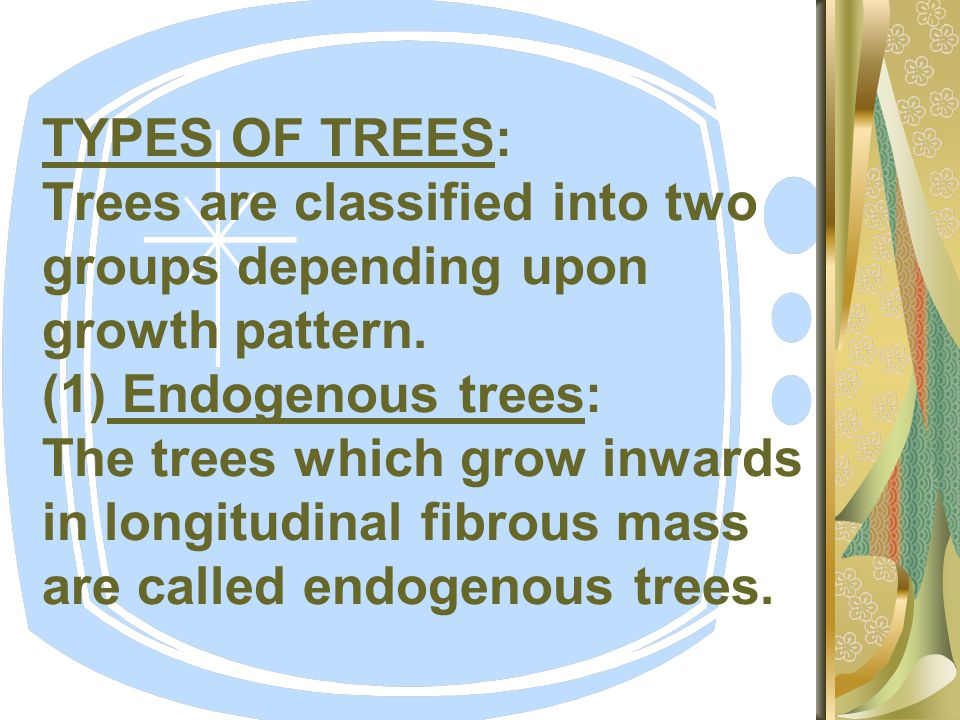 TYPES OF TREES: Trees are classified into two groups depending upon growth pattern.