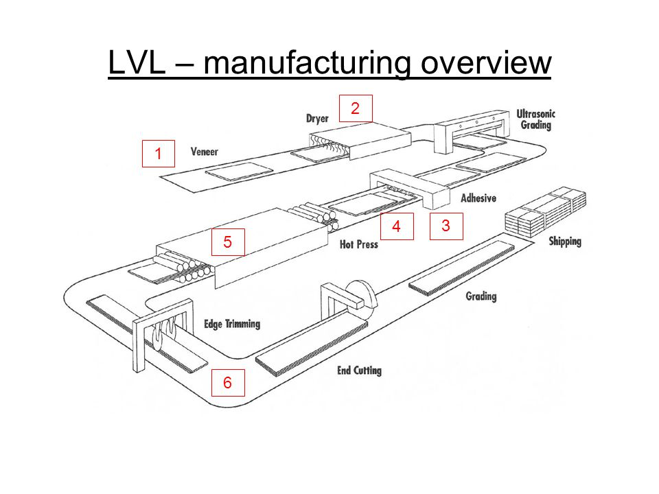 LVL – manufacturing overview
