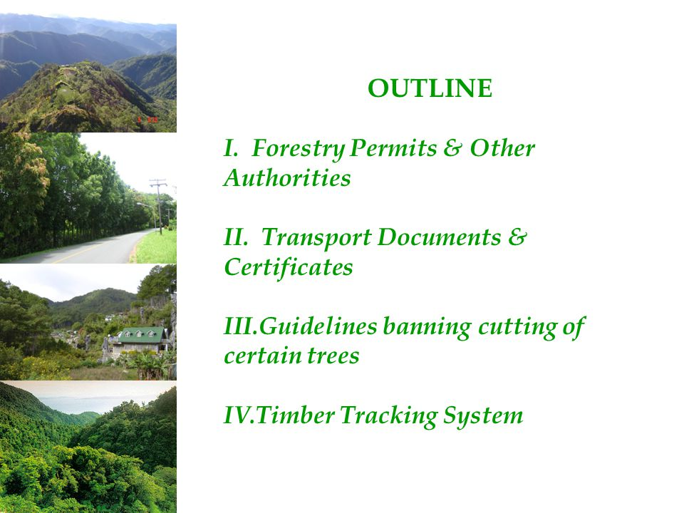 OUTLINE I. Forestry Permits & Other Authorities