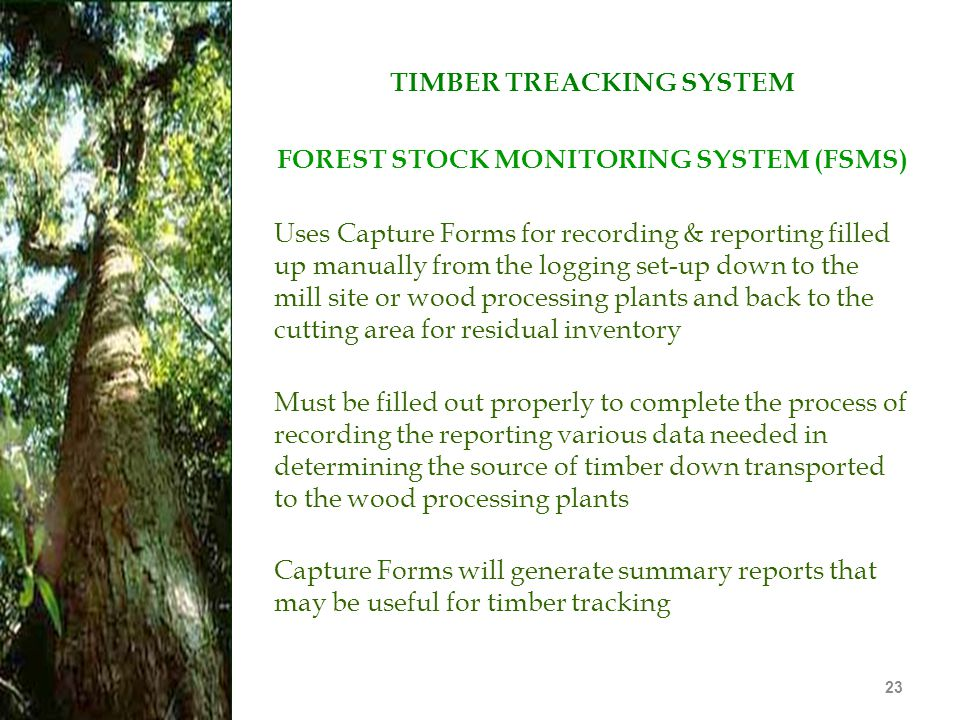 TIMBER TREACKING SYSTEM FOREST STOCK MONITORING SYSTEM (FSMS)