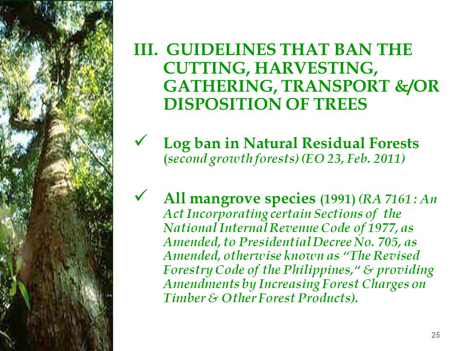III. GUIDELINES THAT BAN THE CUTTING, HARVESTING, GATHERING, TRANSPORT &/OR DISPOSITION OF TREES