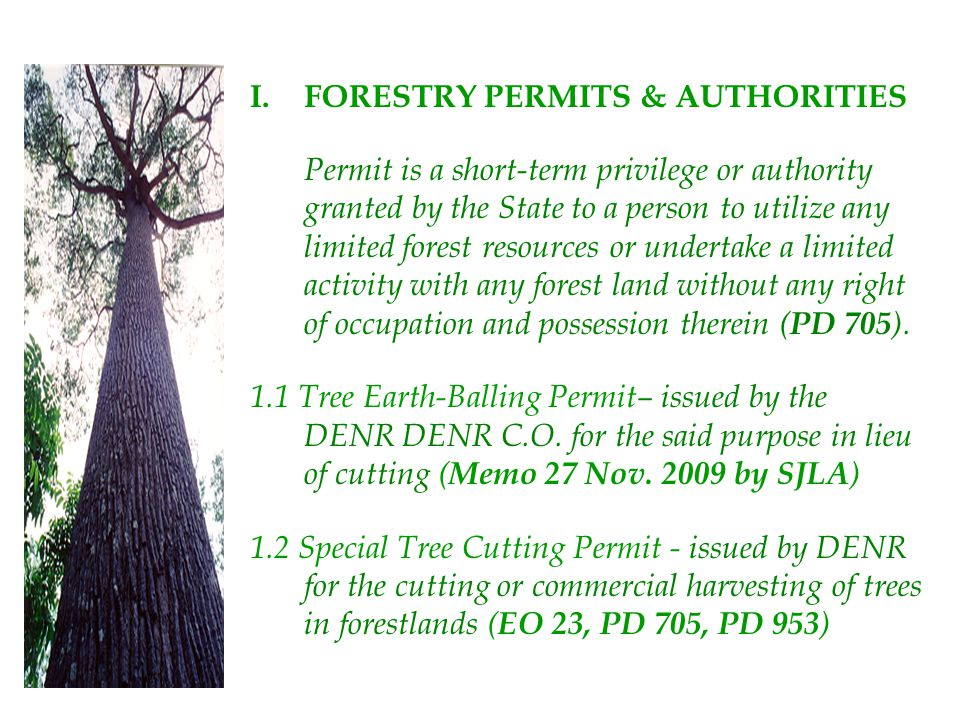 FORESTRY PERMITS & AUTHORITIES