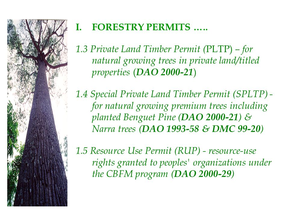 FORESTRY PERMITS ….. 1.3 Private Land Timber Permit (PLTP) – for natural growing trees in private land/titled properties (DAO 2000-21)