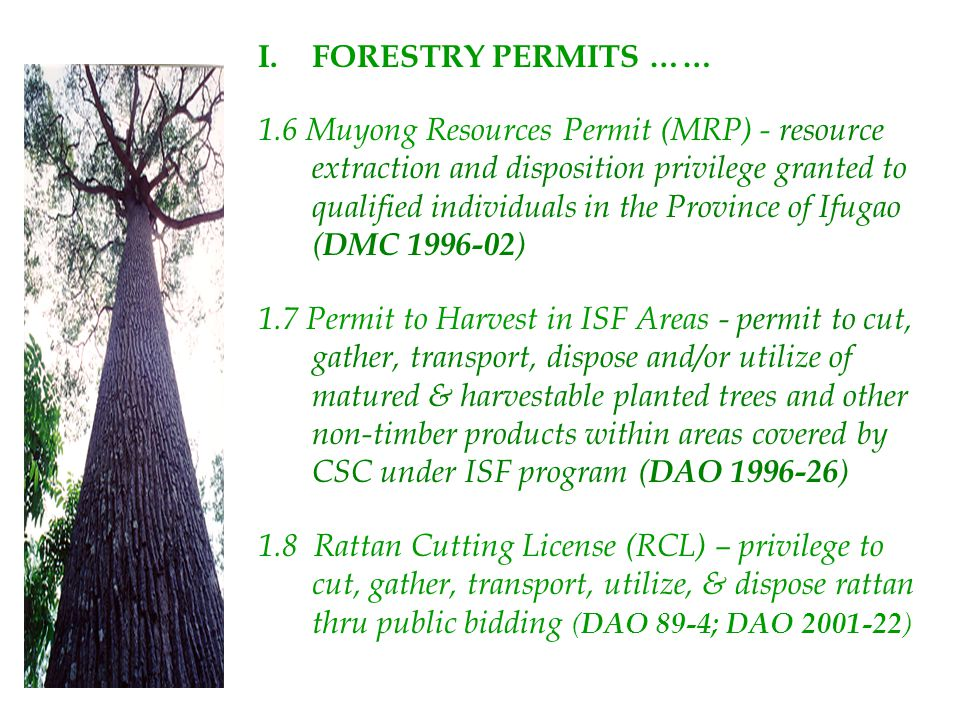 FORESTRY PERMITS ……