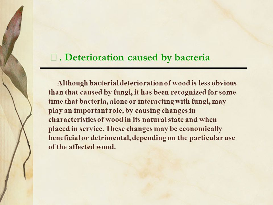 Ⅲ. Deterioration caused by bacteria
