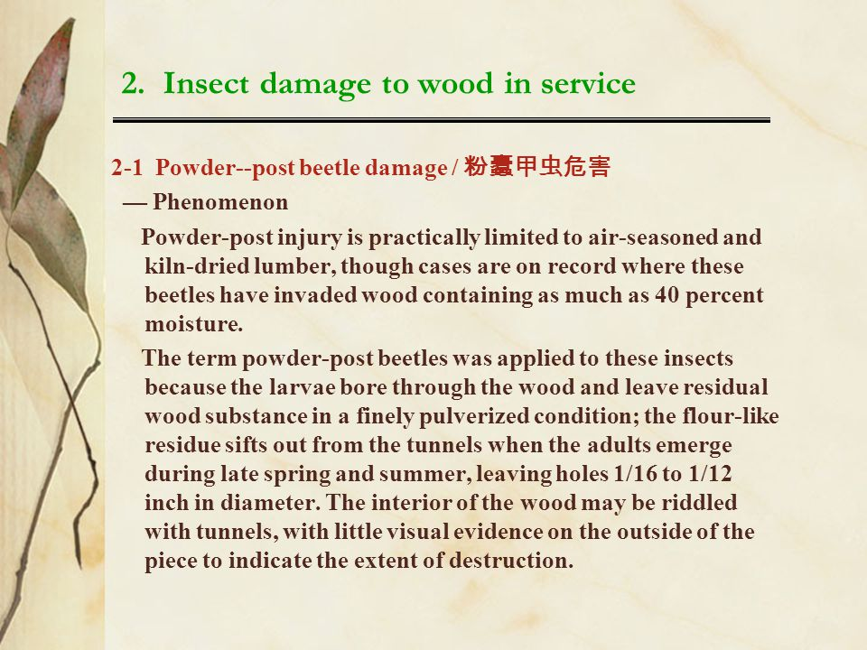2. Insect damage to wood in service