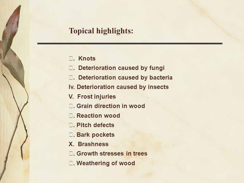 Topical highlights: Ⅰ. Knots Ⅱ. Deterioration caused by fungi