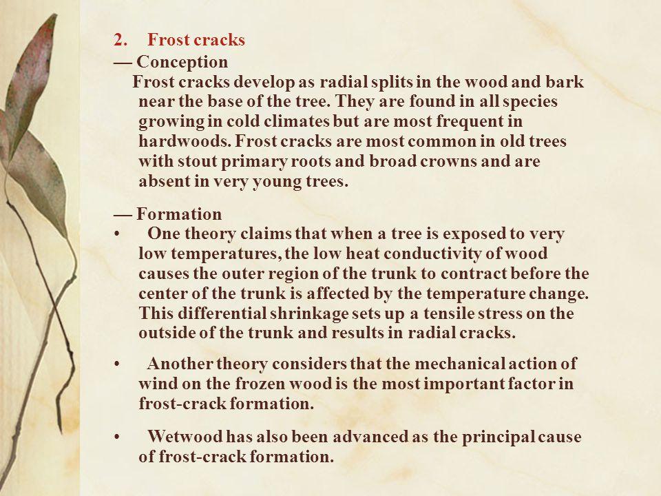 Frost cracks — Conception.