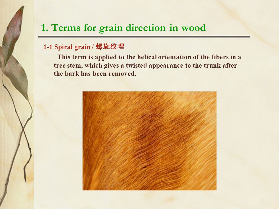 1. Terms for grain direction in wood