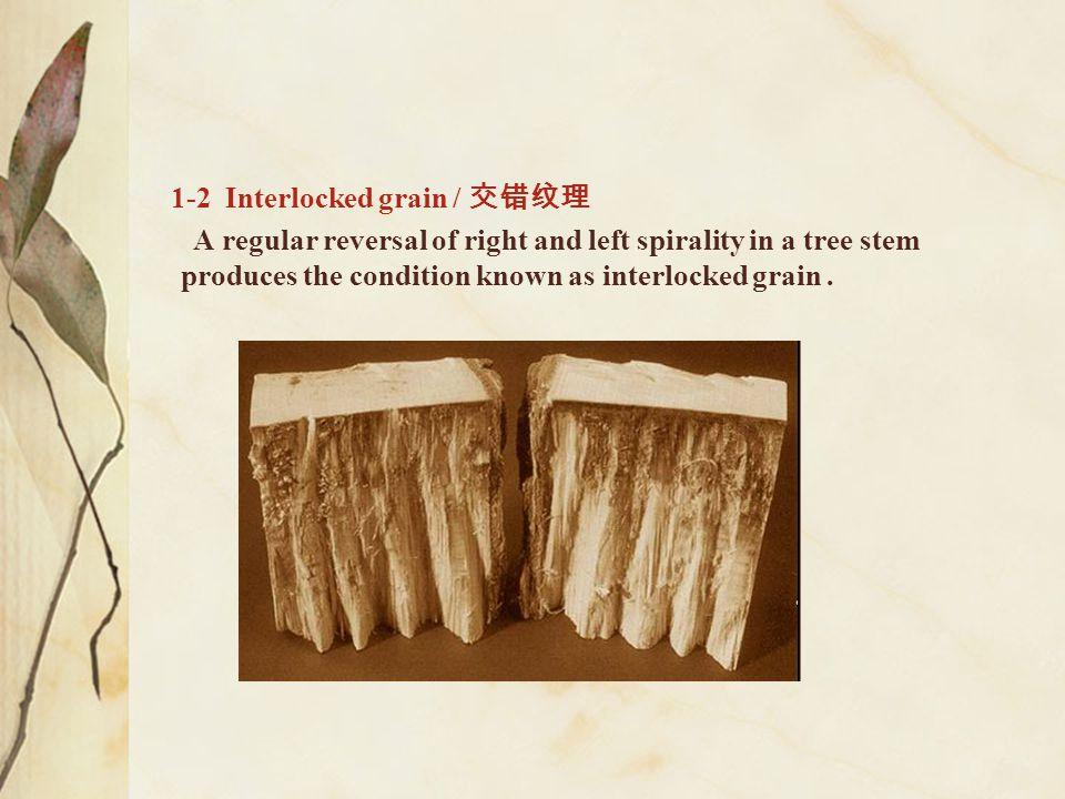 1-2 Interlocked grain / 交错纹理