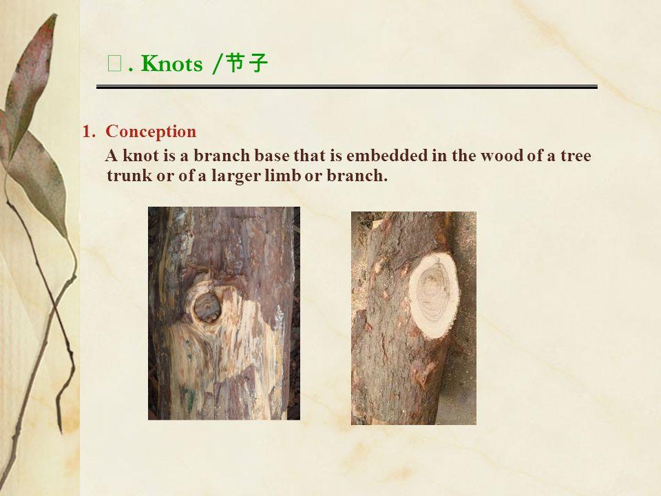 Ⅰ. Knots /节子 1. Conception.