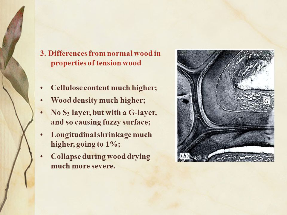 3. Differences from normal wood in properties of tension wood