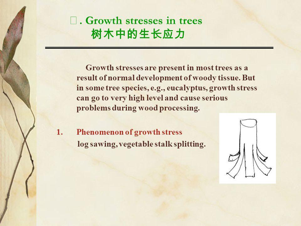 Ⅺ. Growth stresses in trees 树木中的生长应力