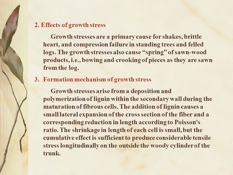 2. Effects of growth stress