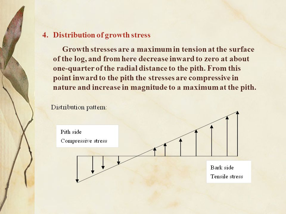 Distribution of growth stress