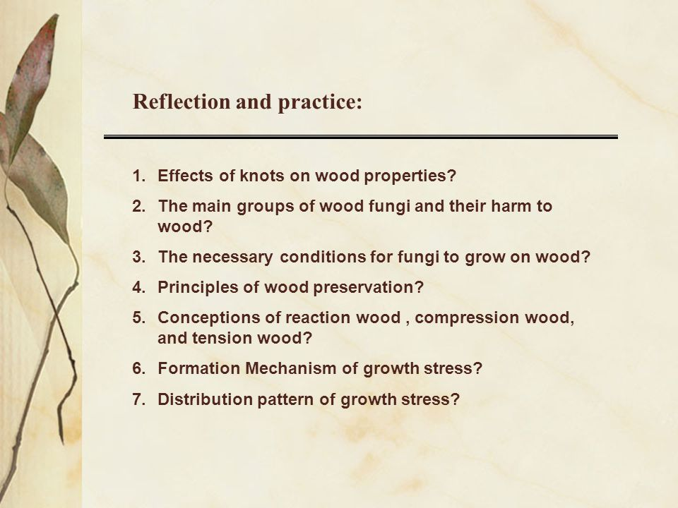 Reflection and practice:
