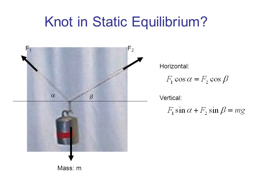Knot in Static Equilibrium