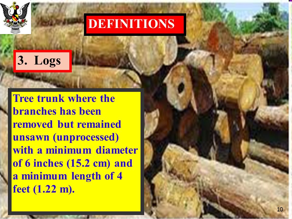 DEFINITIONS 3. Logs.